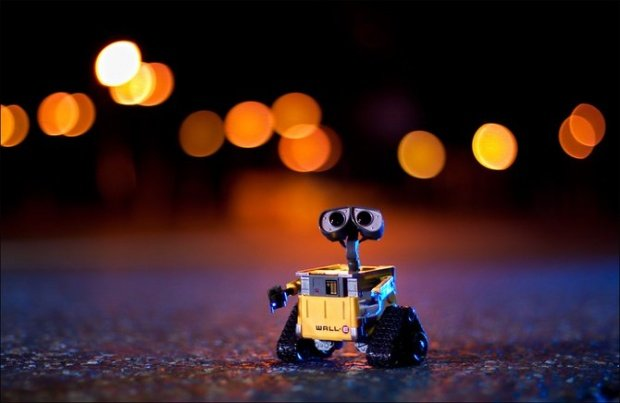 Danbo and Wall-E: Photographic Adventure | The Mary Sue