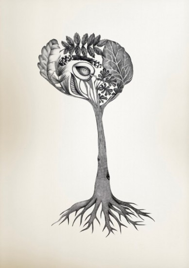 brain art competition puts a new spin on neuroscience