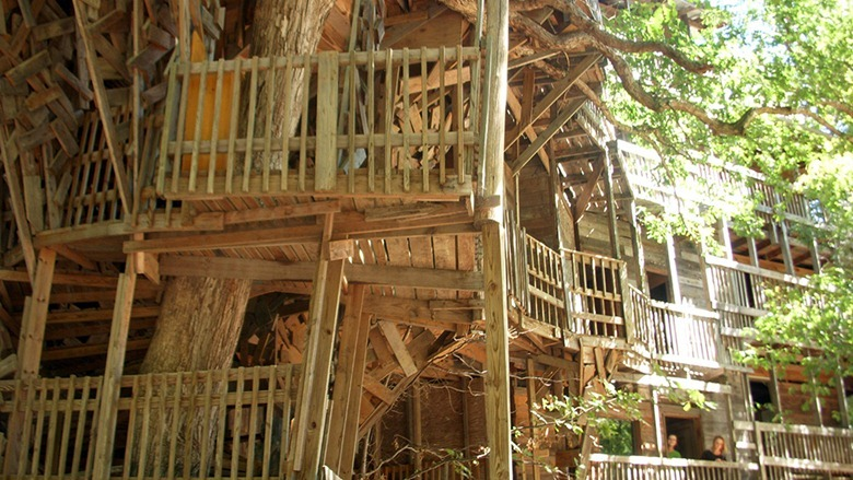 amusing - Biggest Treehouse In The World 2017