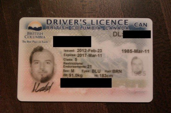 Half-beard The Half-hair License Driver's Photo Mary Sue