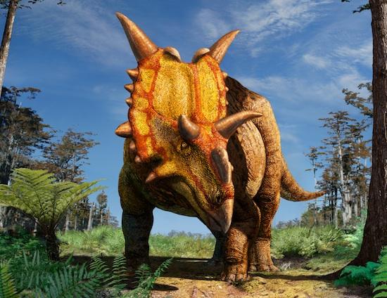 Xenoceratops.jpg