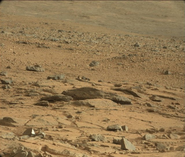Mars Rat Rock on Mars is Just a Rock on Mars   The Mary Sue