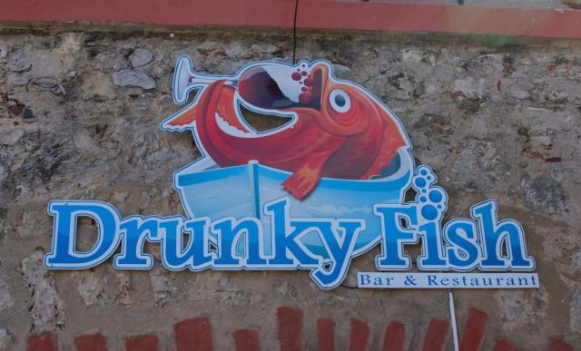 Drunky Fish