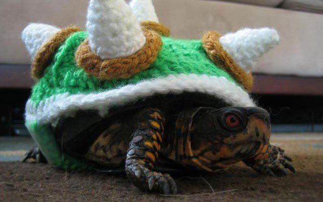 Knit Turtle Cosy Bowser The Mary Sue