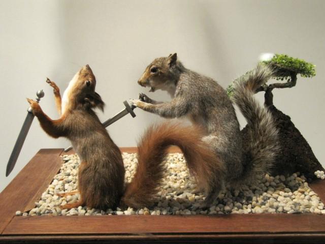 twosquirrels