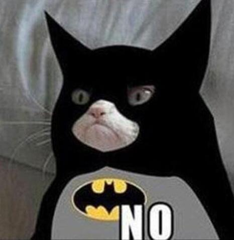 GrumpyCatBatman.jpg