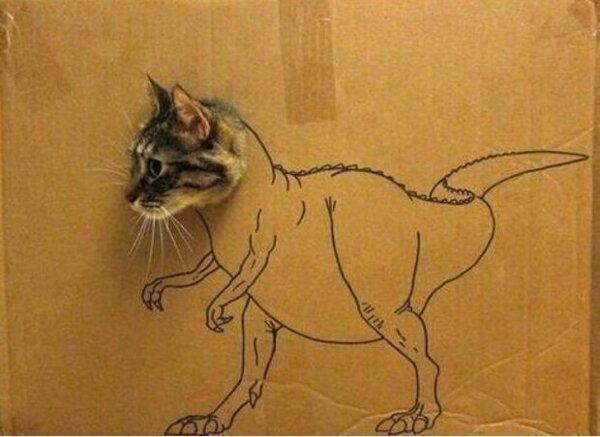 Kitten saurus