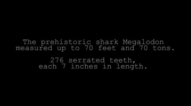 megalodon 70