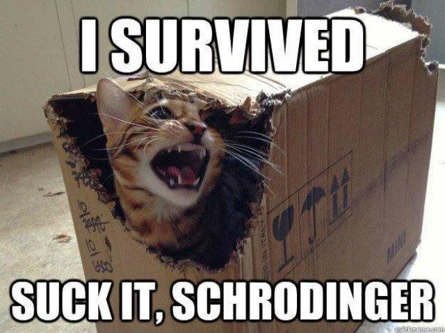 Schrodinger Box