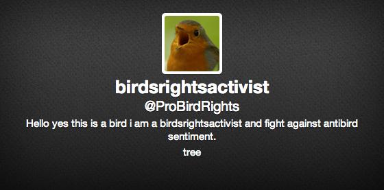 birdrights