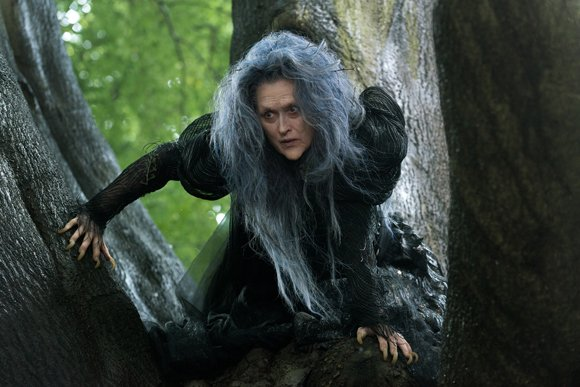Fairy Woods Aesthetic