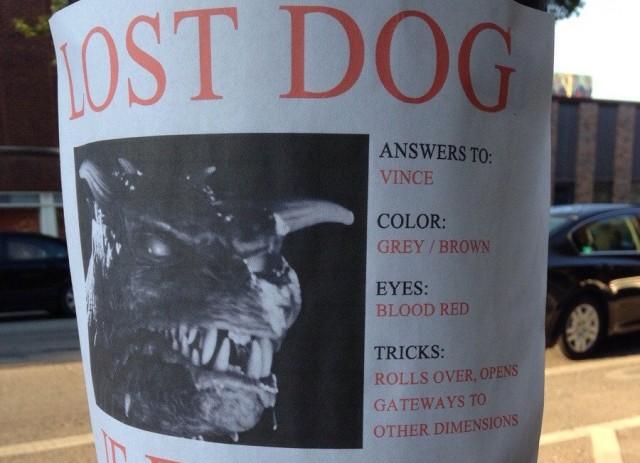 ost Dog