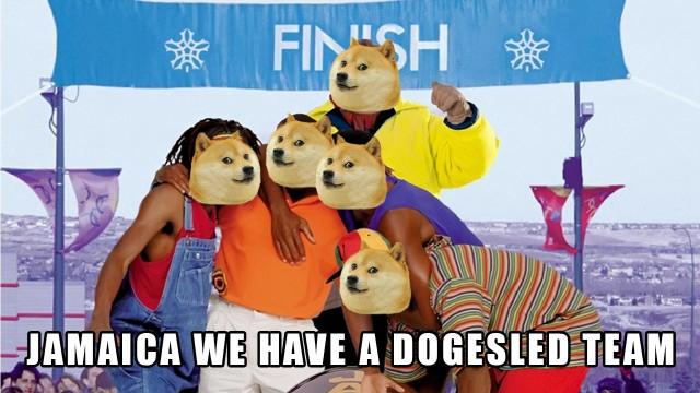 dogesled