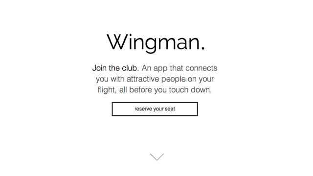 wingman3