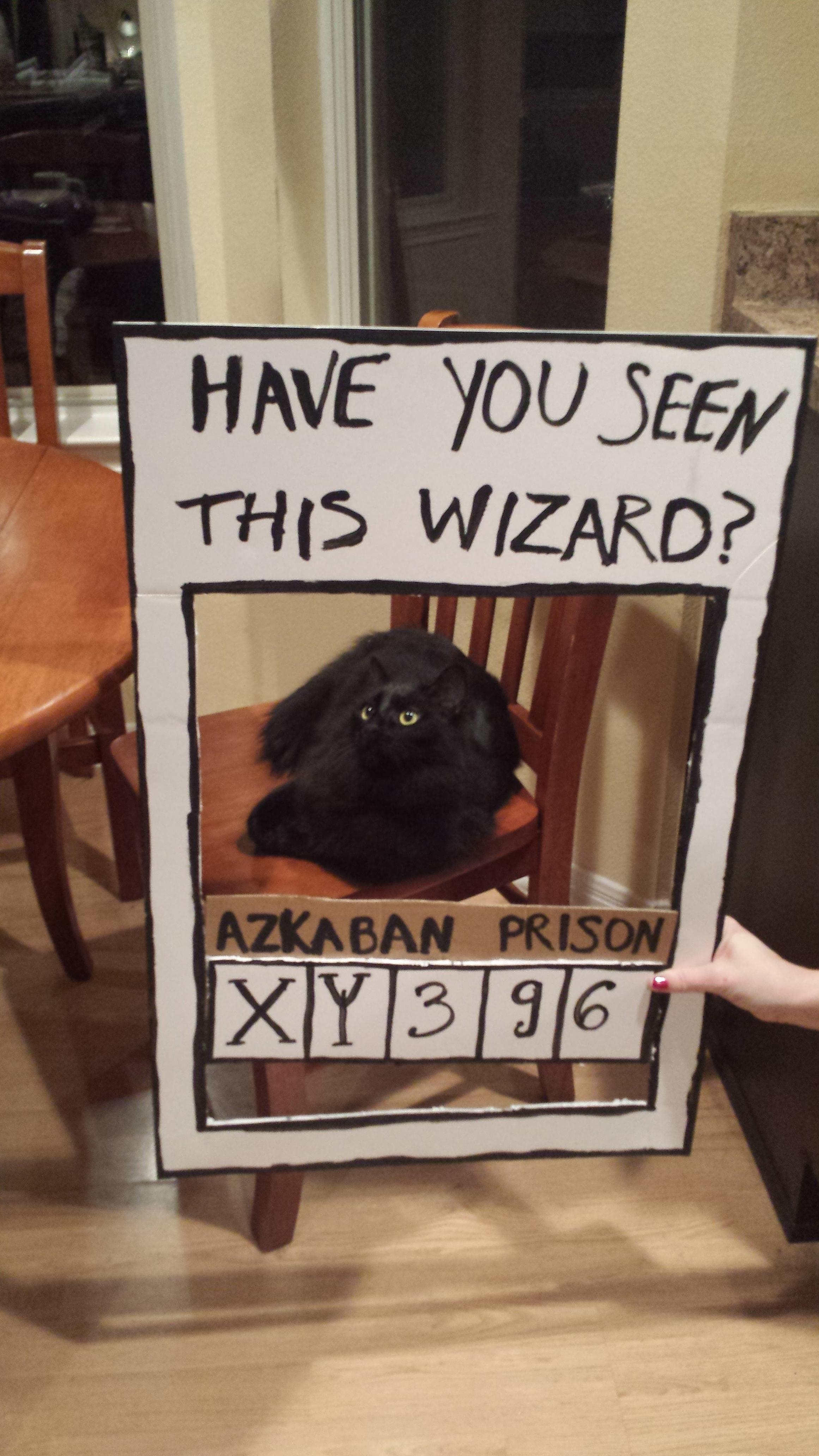 Redditors Friend Turns Her Apartment Into Hogwarts For The Best Birthday Surprise