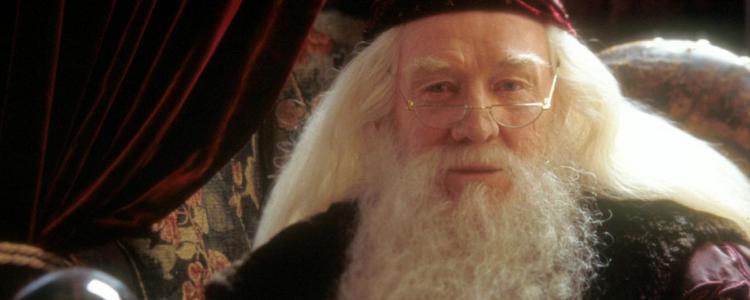 Albus Dumbledore Wallpaper Hogwarts Professors 32795922 1024 768