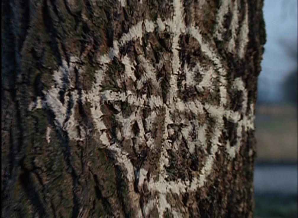 The X Files Newbie Recap Fresh Bones Colony The Mary Sue