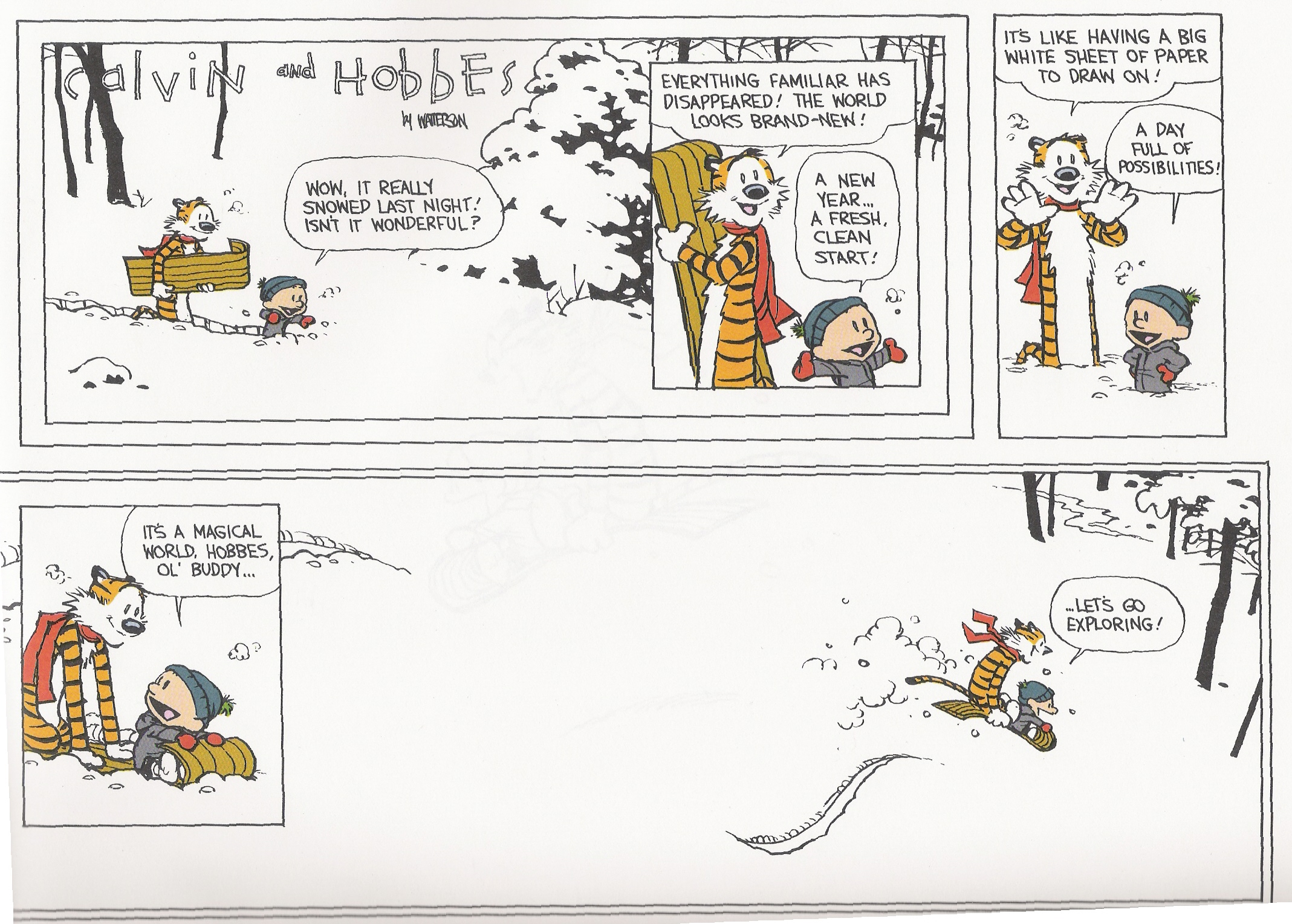 Image result for calvin and hobbes its all new