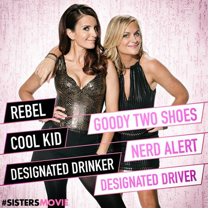 Sisters Graphic1 e1449973160195 tina fey and amy poehler sisters as more than tropes the mary sue