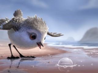 pixar piper short animation