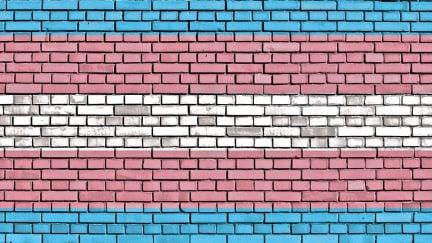 trans flag wall