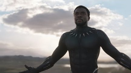 Black Panther come at me