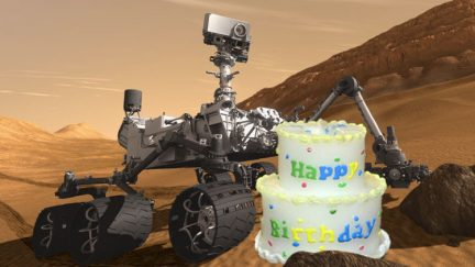 birthday of mars rover - photo #21