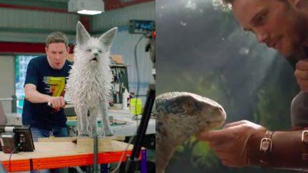 Star Wars vulptex and jurassic world 2 raptor