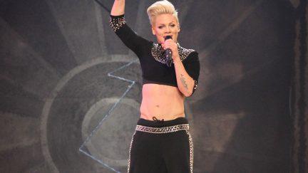 Pink singing. Image credit: JStone / Shutterstock.com