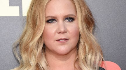 image: DFree/Shutterstock LOS ANGELES - MAY 10: Amy Schumer arrives for the 'Snatched' World Premiere on May 10, 2017 in Westwood, CA
