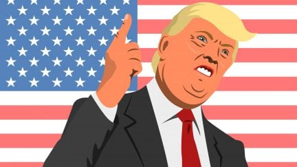 Donald Trump angry point and flag