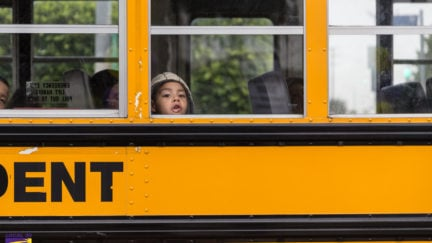 A small child looks out of a school bus window.
