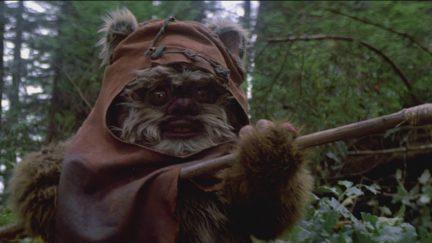 Wicket in Star Wars: Return of the Jedi