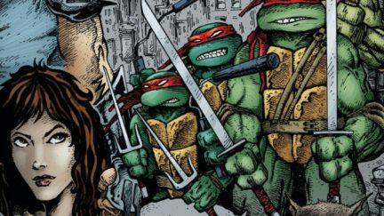 The original teenage mutant ninja turtles when they all had the same bandana