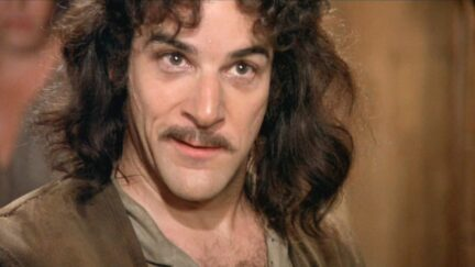 Mandy Patinkin in the Princess Bride
