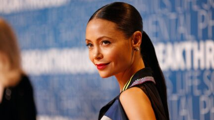 MOUNTAIN VIEW, CA - NOVEMBER 04: Thandie Newton attends the 2019 Breakthrough Prize at NASA Ames Research Center on November 4, 2018 in Mountain View, California. (Photo by Kimberly White/Getty Images for Breakthrough Prize)