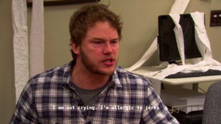 Chris Pratt as Andy Dwyer
