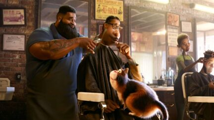 a scene in a barber shop from soul with a cat