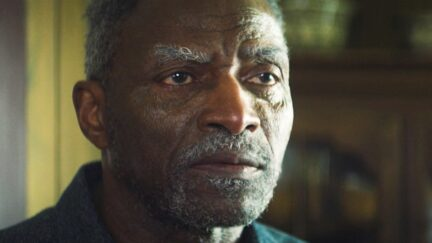 Carl Lumbly in The Falcon and the Winter Soldier (2021)