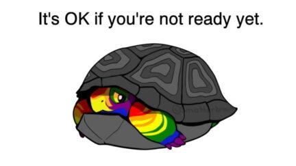 Hue the Pride Turtle