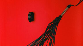 Leather whip on red background.