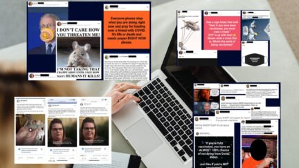 A laptop computer and superimposed posts from the Reddit forum 'Covid19 Ate my Face'