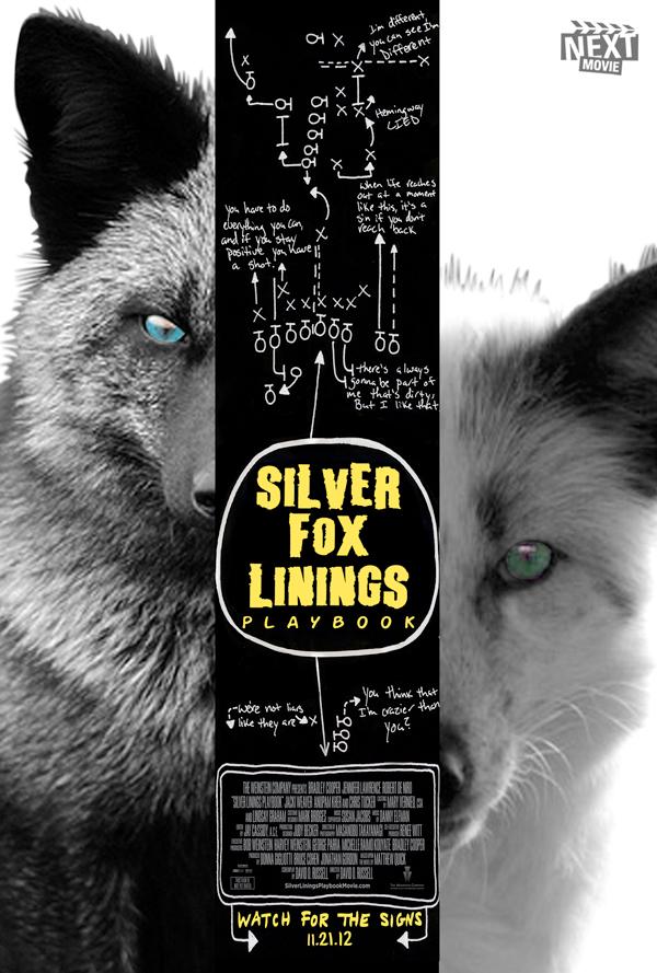 silver-fox-linings-playbook