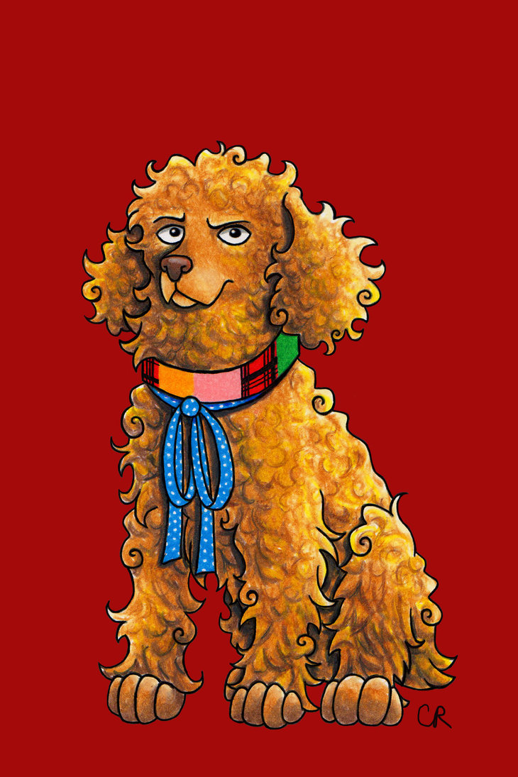 Colin Baker - Cocker Spaniel