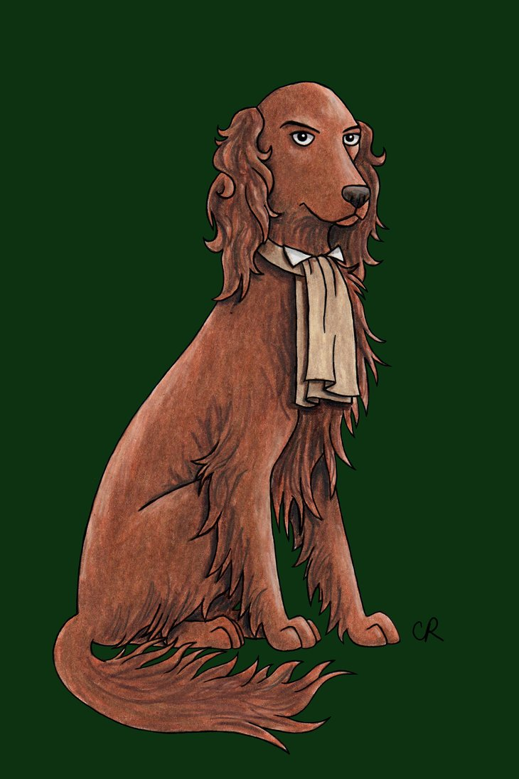 Paul McGann - Irish Setter