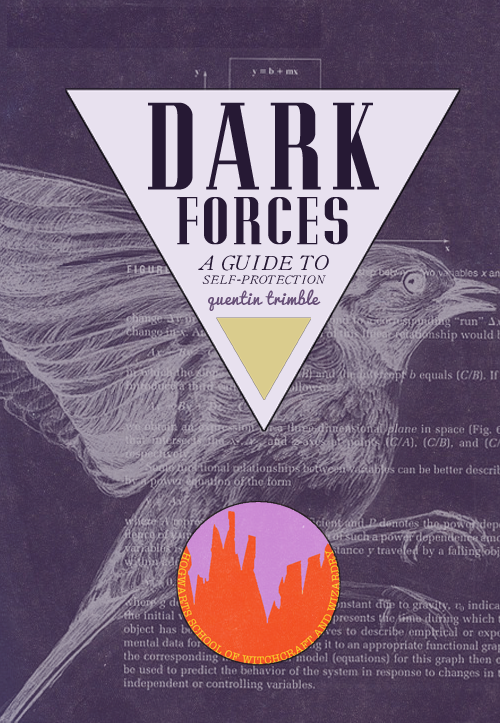 the-hogwarts-school-of-witchcraft-and-wizardry-library-the-dark-forces-a-guide-to-self-protection-quentin-trimble