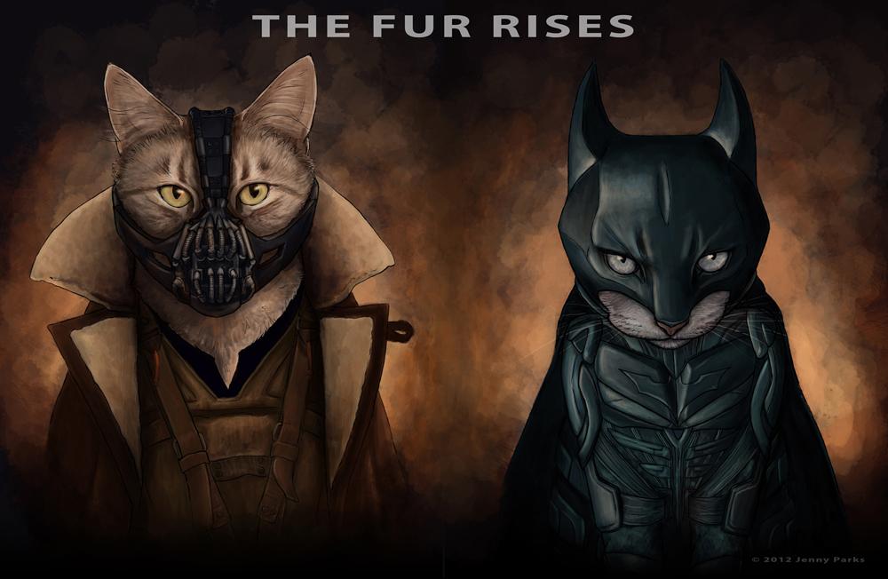 cat-batman-bane