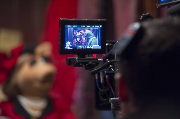 muppets2pics5