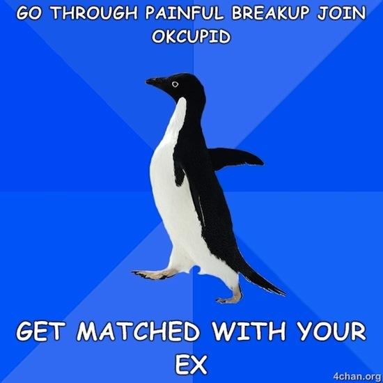 Ex Match