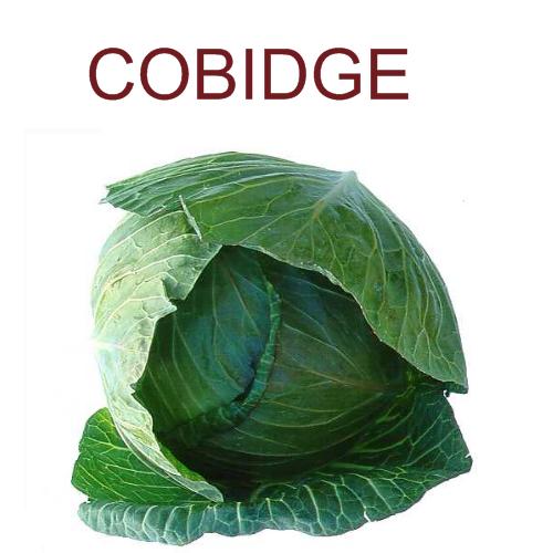 Cobidge